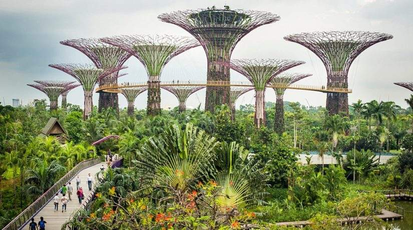 Taking the EU-Singapore Relationship to New Sustainable Heights