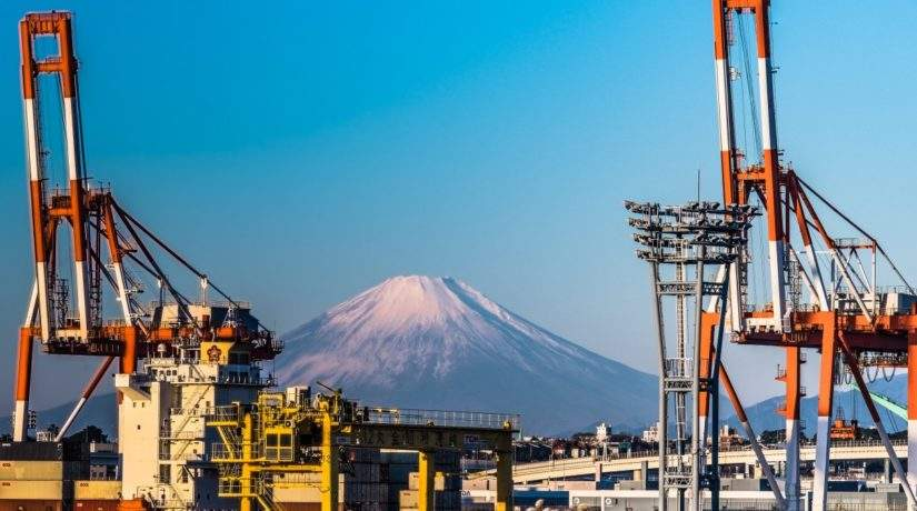 Japan's 2050 Net-Zero Emission Policy: a Case for Degrowth?